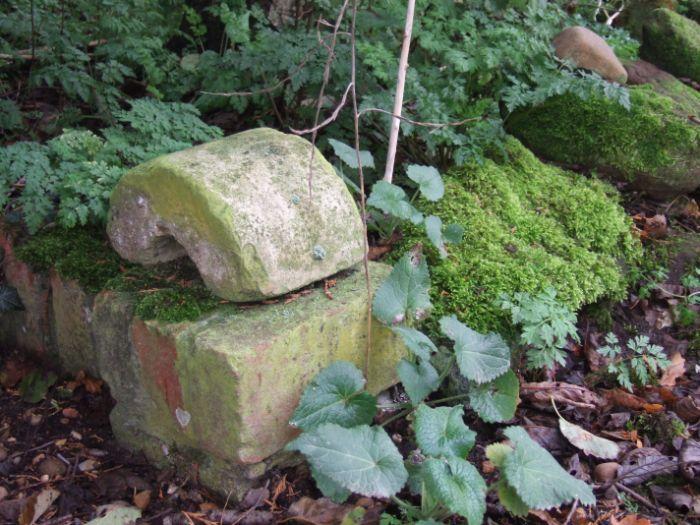 clophill-in-autumn-109