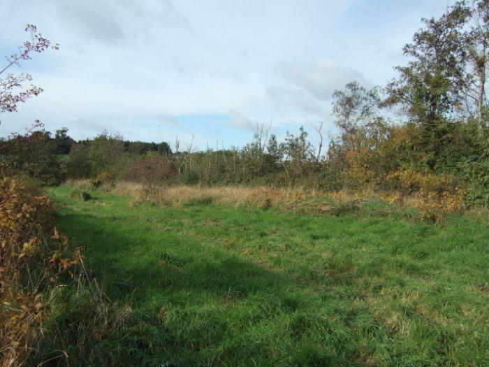 clophill-in-autumn-2