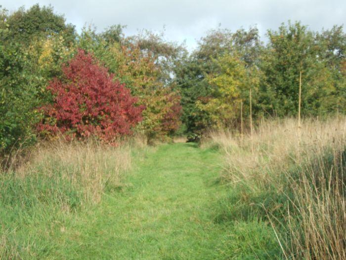 clophill-in-autumn-40