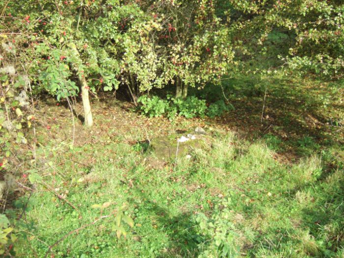 clophill-in-autumn-53