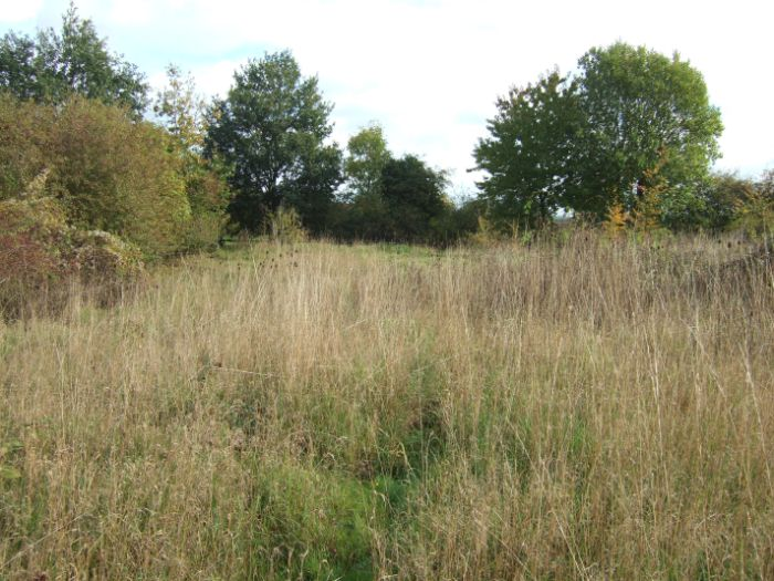 clophill-in-autumn-58