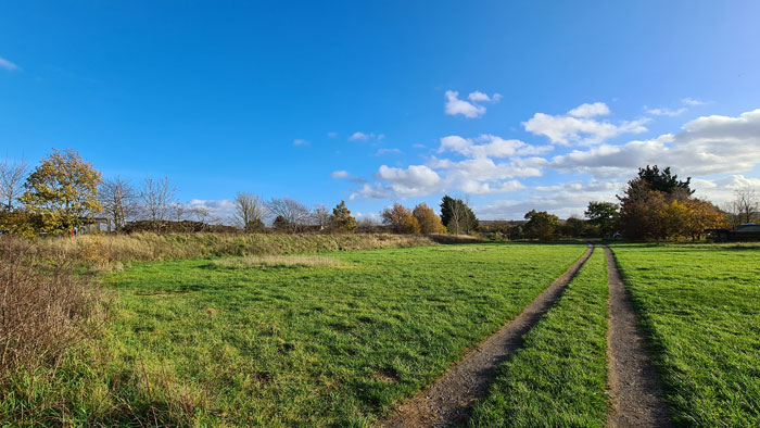 front-field
