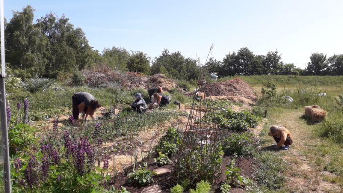 perm-garden-1