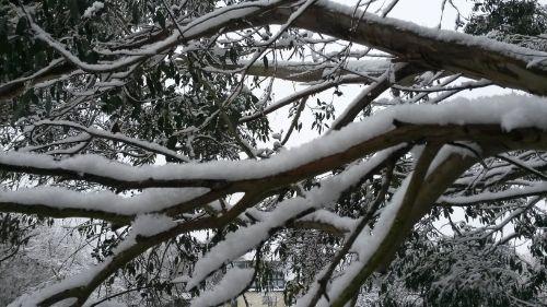 winter-in-clophill-11