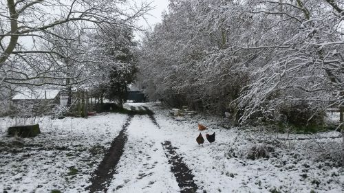 winter-in-clophill-14