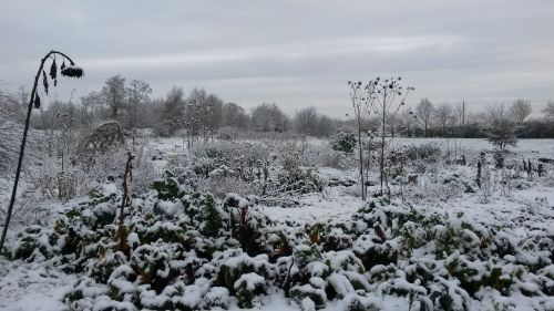 winter-in-clophill-9