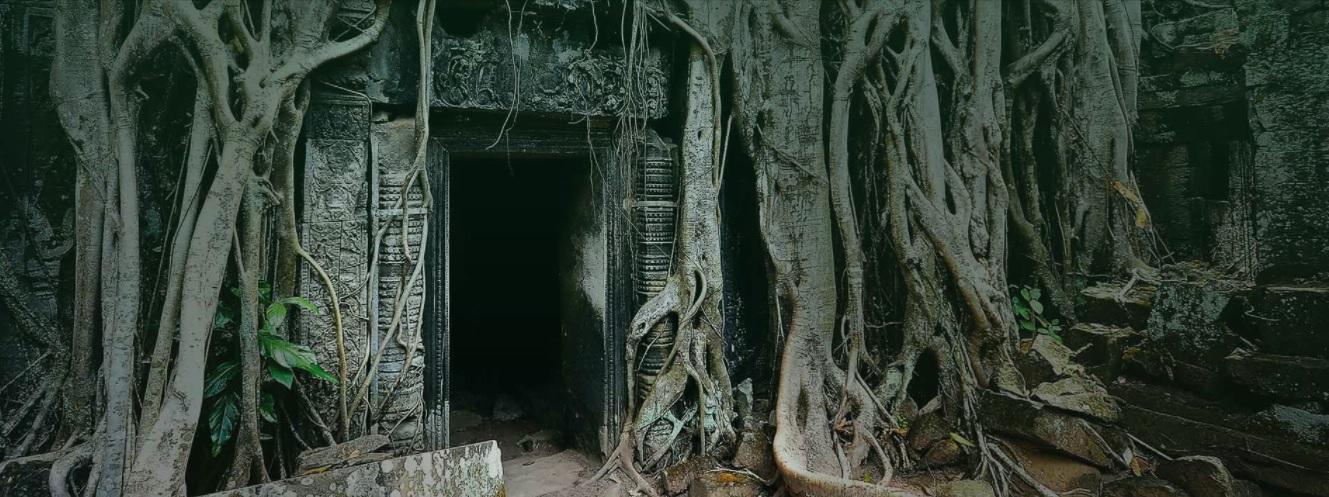 chris luttichua temple