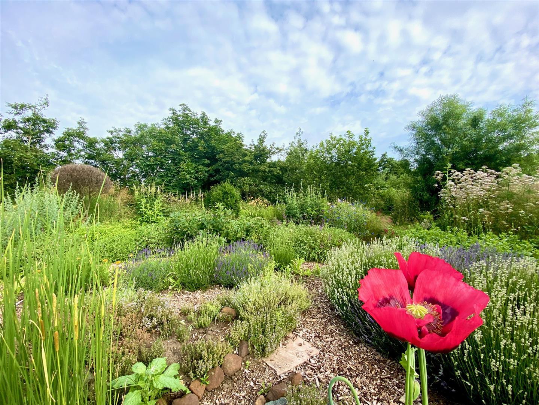 Clophill Centre Garden (2)