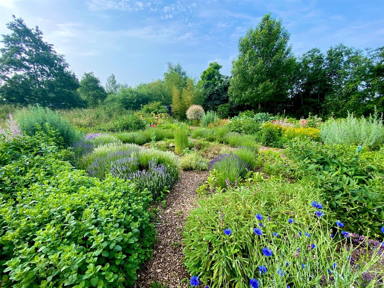 Clophill Centre Garden